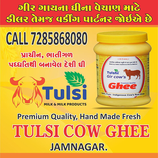 Tachukdi - DAIRY PRODUCTS in Surat