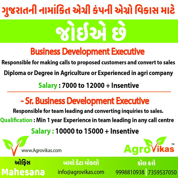 Tachukdi - SALES & MARKETING job in Mahesana